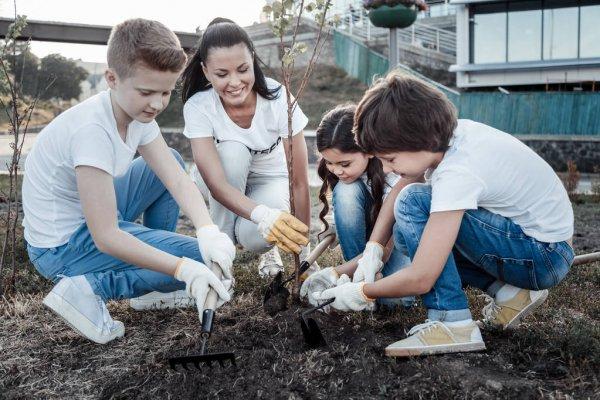 Niños plantando arboles